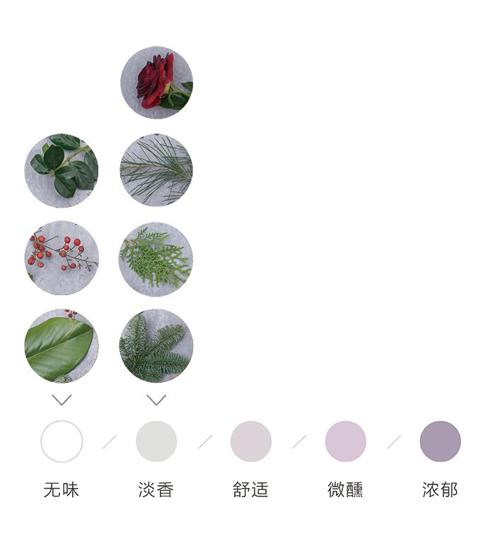 花香4种.jpg