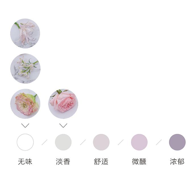 花香3种.jpg